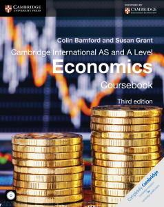 A level Economics - Ebook