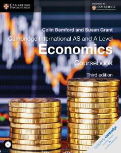 A level Economics - Ebook